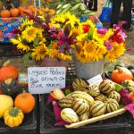 Flowers at the Boothbay Farmers Market