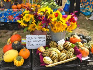 Flowers and fruit at the Boothbay Farmers Market