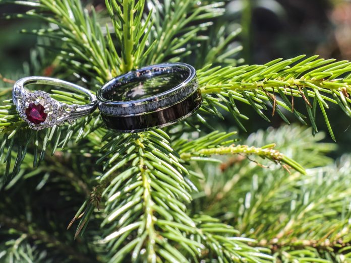 Two wedding rings on a tree branch from a Boothbay Harbor wedding