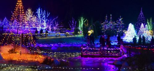 View of the light displays at Gardens Aglow in Boothbay Harbor