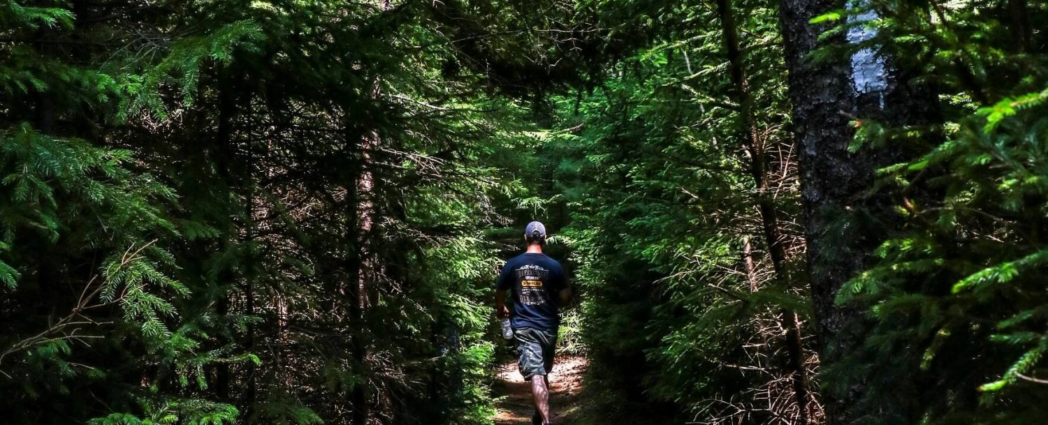 A man walking along a trail in the trees, hiking in Midcoast Maine