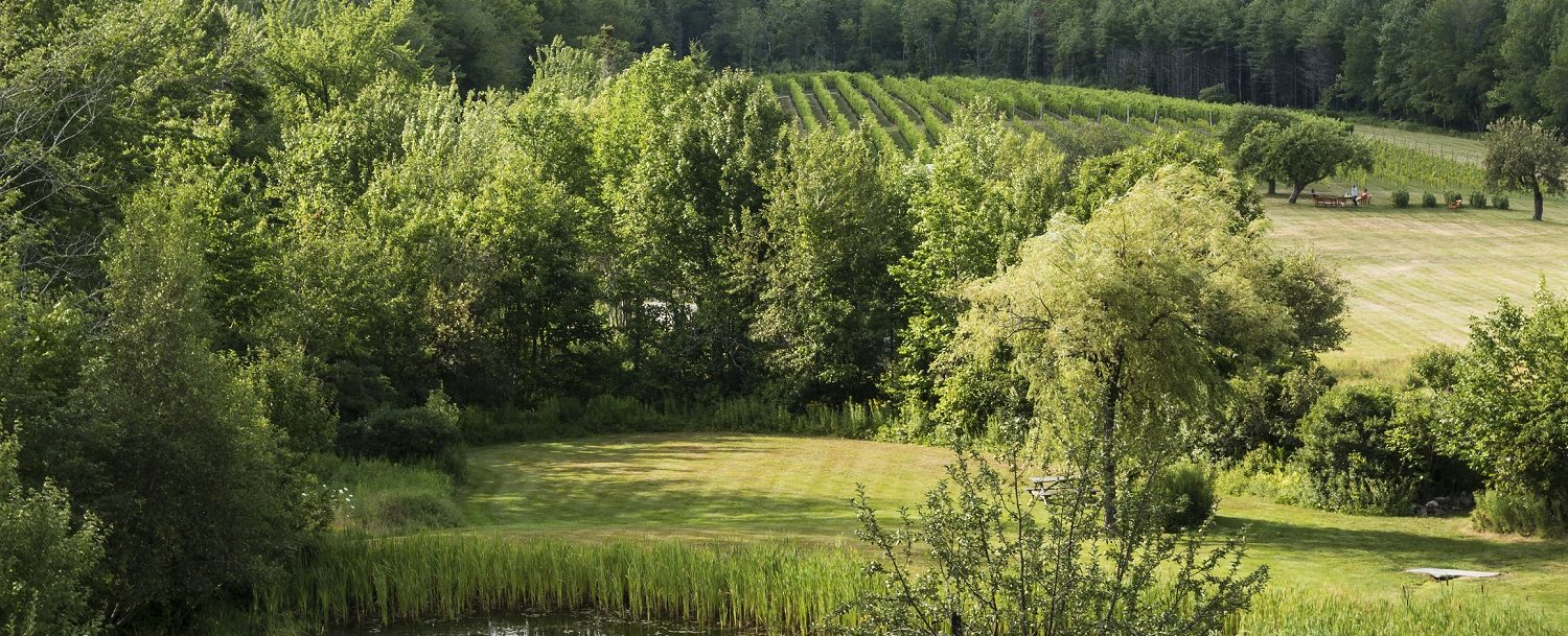 View of Cellardoor Winery along the Maine Wine Trail