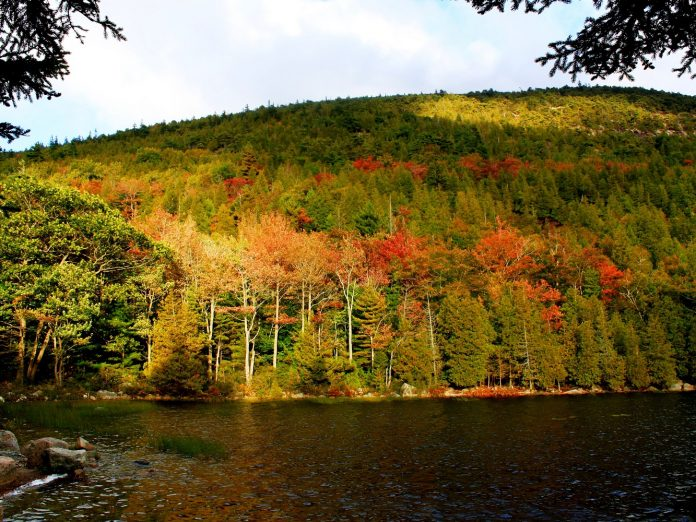 Maine fall foliage by the water