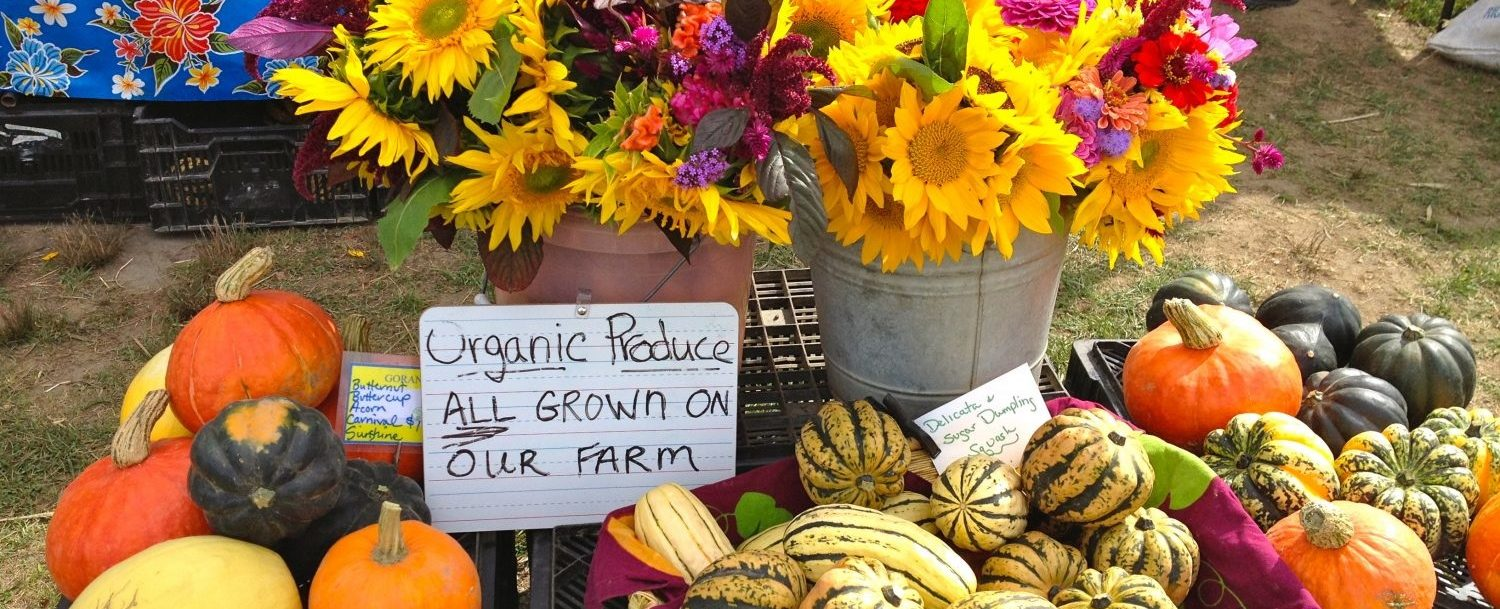 Flowers and produce at the Boothbay Farmers Market