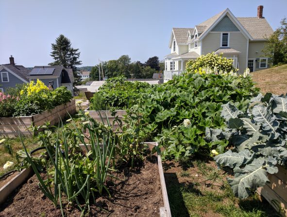 The garden at the Topside Inn, source of some of the freshest ingredients used at the inn